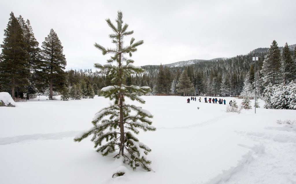 In this file photo, the California Department of Water Resources conducts its first manual snow survey on January 3, 2017 at Phillips Station, Calif., just off Highway 50 near Sierra-at-Tahoe Road approximately 90 miles east of Sacramento. California's return to a cold, wet winter has brought some relief to the drought-stricken state, and a recent snowfall has turned the mountain resort of Wrightwood