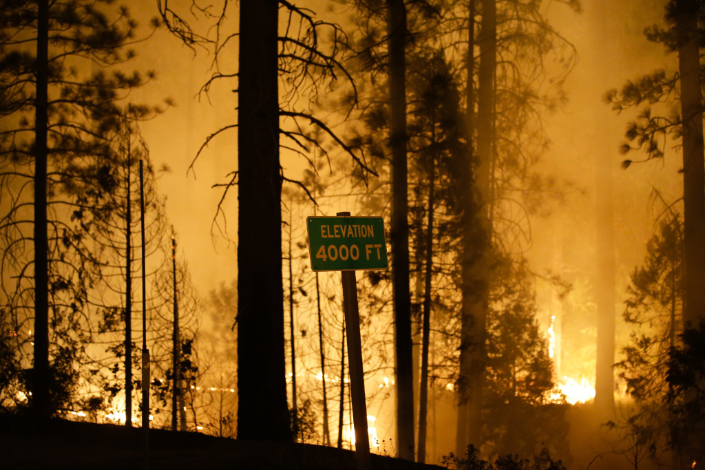 The Rim Fire burns near Yosemite National Park, Calif., on Saturday, Aug. 24, 2013. Fire crews are clearing brush and setting sprinklers to protect two groves of giant sequoias as a massive week-old wildfire rages along the remote northwest edge of Yosemite National Park.