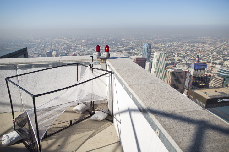 The Natural History Museum has partnered with the U.S. Bank Tower to study insects from atop the tallest building on the West coast. Entomologists with the museum placed an insect trap on the roof of the 73-floor building.