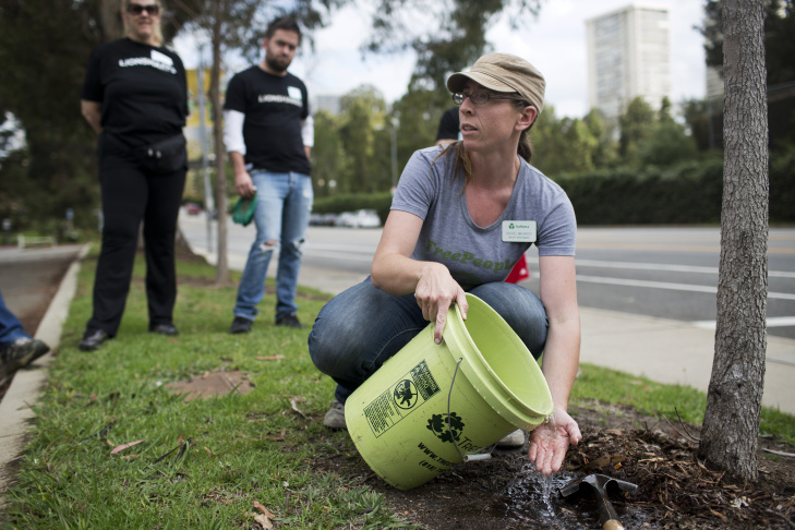 Rachel Malarich, forestry senior manager for Tree People, demonstrates how to water a tree during one of Tree People's urban forestry volunteer events at Cheviot Hills Park on Friday morning, June 5, 2015. The