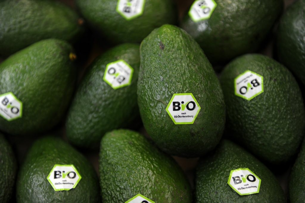 Avocados are labelled with the European Union's logo for organic food on February 15, 2012 at the BioFach trade fair for organic products in Nuremberg, southern Germany.