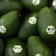 Avocados are labelled with the European