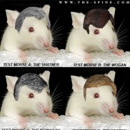 A cartoonist makes good-natured fun of experiments testing hair-growth methods on mice.