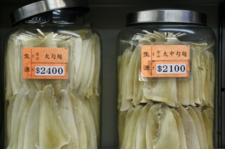Dried shark fins for sale in jars are displayed at a retailer along a busy street in the Central district of Hong Kong on Nov. 12, 2008. Many big shark species have fallen prey to booming Asian economies where shark-fin soup is prized as a must-have delicacy at weddings and other banquet occasions.