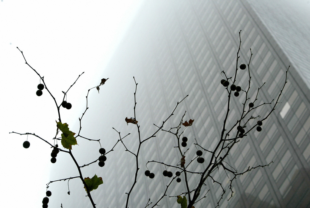 In this file photo, a dense cloud fogs downtown Los Angeles.