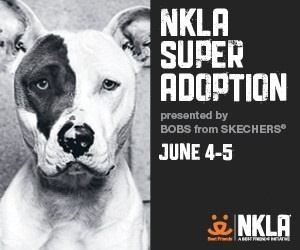 2016 Spring NKLA Super Adoption