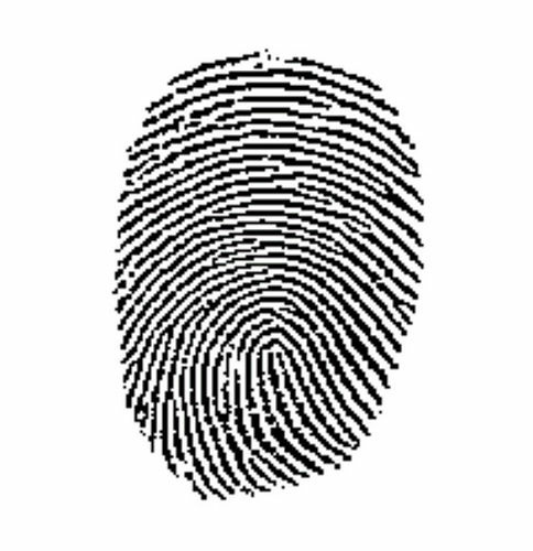 LAPD has a backlog of over 3,500 fingerprints related to property crimes and cold case murders that've yet to be analyzed.