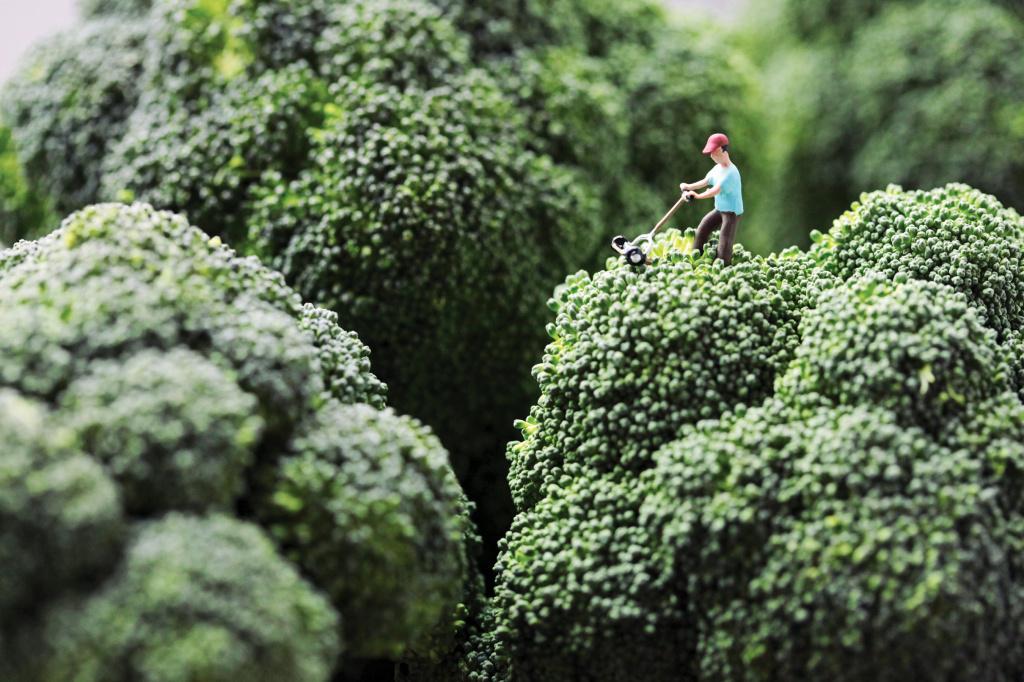 Broccoli Mower: