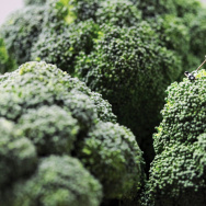 """Broccoli Mower: """"Douglas stubbornly refused to accept his wife's opinion that he had let the lawn go too long without attention."""""""
