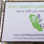 Berkeley Patient Group