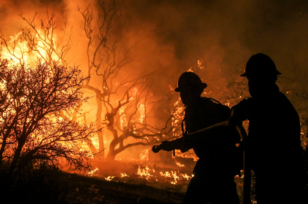 Firefighters battle the Blue Cut wildfire near Cajon Pass, north of San Bernardino, California on August 16, 2016.   A rapidly spreading fire raging east of Los Angeles forced the evacuation of more than 82,000 people on August 16 as the governor of California declared a state of emergency. Despite the efforts of 1,250 firefighters with more on the way, none of the inferno was contained as of late on August 16 , state firefighting agency Cal Fire spokeswoman Lynne Tolmachoff told AFP. The wildfire poses