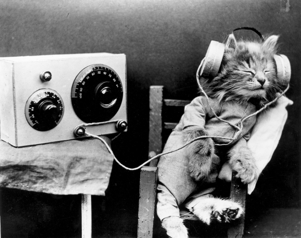 January 1926:  A cat wearing headphones to listen to a radio.