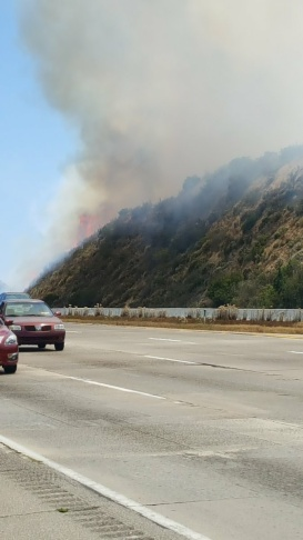 The Temecula Fire was burning near I-15 off the Temecula Freeway on June 4, 2016.