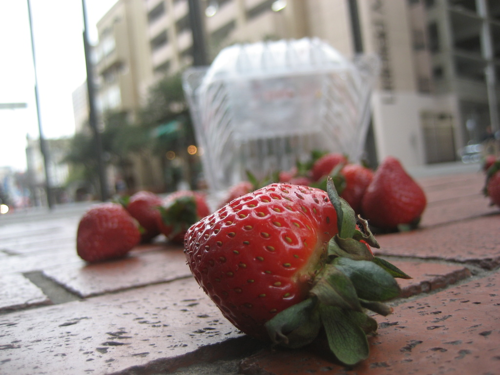Strawberries on the ground