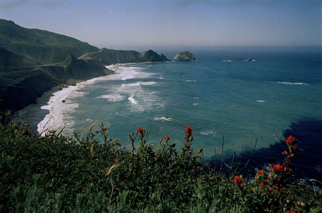 Wildflowers underscore the Pacific coast at Big Sur in this undated photo.