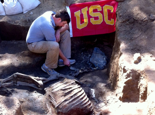 Professor Thomas Garrison works to exhume the remains of legendary California thoroughbred Native Diver on March 9, 2014.
