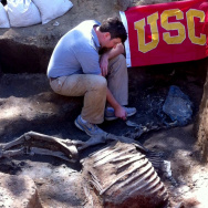 USC exhumes Native Diver