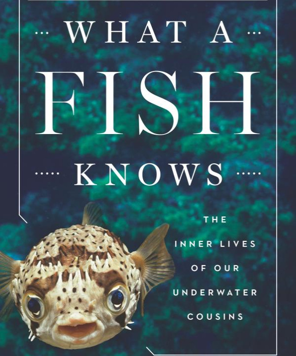 'What a Fish Knows: The Inner Lives of our Underwater Cousins