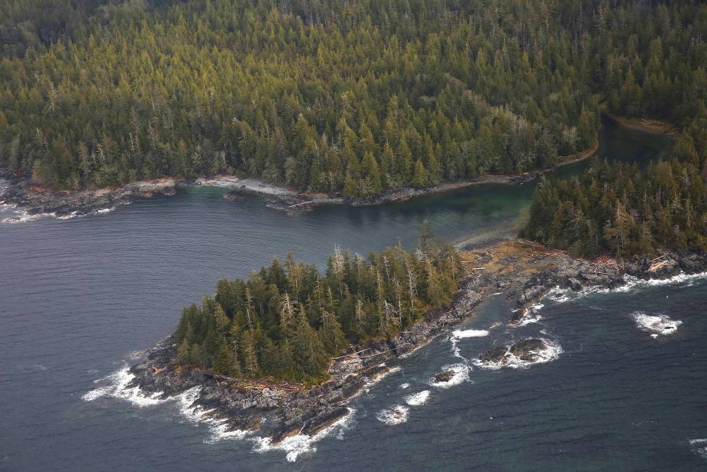 The Tongass National Forest, near Ketchikan, Alaska. The Trump Administration is set to remove long-standing protections against logging and development in the forest.