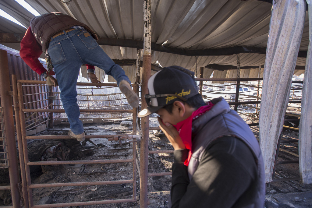 Arturo Castaneda climbs into a stall to collect horse shoes from his dead horse, Petacas, as fellow worker Anthony Martin looks on after 29 horses at Rancho Padilla died in the Creek Fire on December 6, 2017 near Sylmar, California.