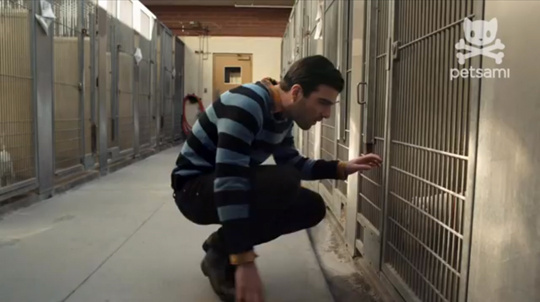 Zachary Quinto looks to adopt a Los Angeles shelter dog in