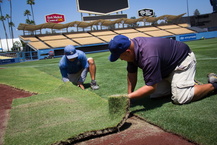 Groundskeepers lay sod at Dodger Stadium in preparation for Saturday's Guinness International Champions Cup soccer matches.