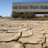 California drought famers - generic- Fertile Central Valley Suffers From Statewide Drought