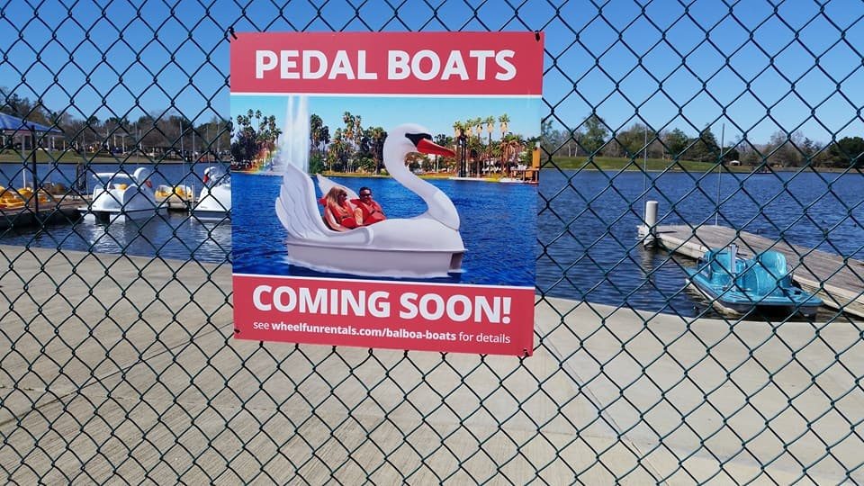 The swan boats are here — as seen Sunday, March 4, 2018.
