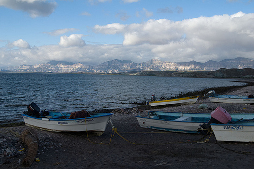 Small boats, called pangas, are used in Mexico to fish. They are about 20 feet long, and with two or three outboard motors on back, a smuggler can take a load of up to 20 people far up the coast.