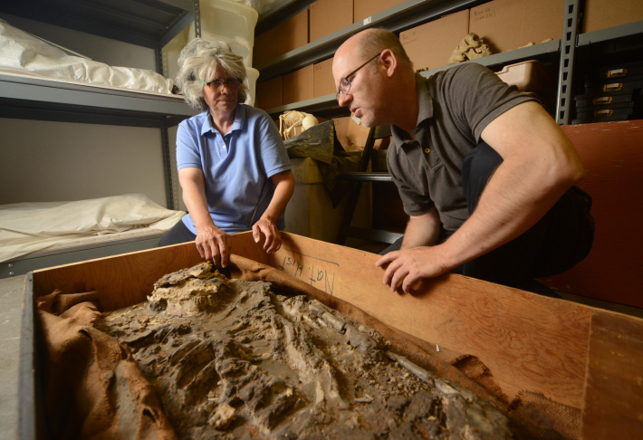 Drs. Monge and Hafford from the Penn Museum investigate the 6,500-year-old skeleton.