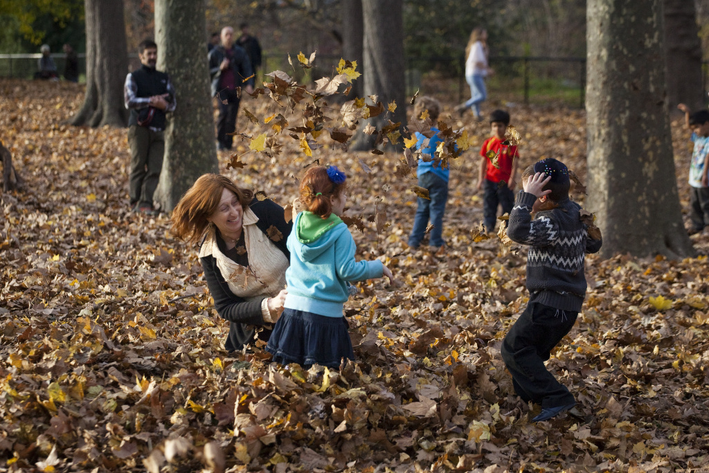 People play in the leaves during the mild autumn weather in Prospect Park on November 27, 2011 in the Brooklyn borough of New York City.