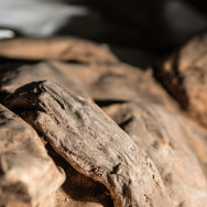 Samples from this 17th century Lithuanian mummy were found to house samples of Variola, the virus that causes smallpox.