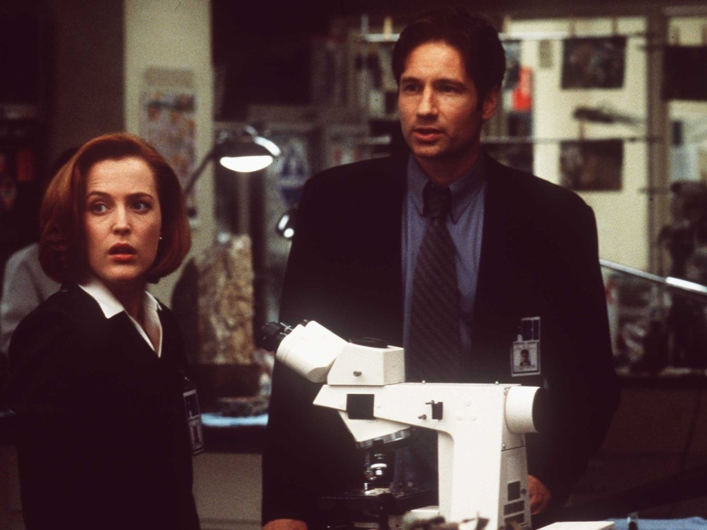 Gillian Anderson and David Duchovny will reprise their roles as Dana Scully and Fox Mulder in