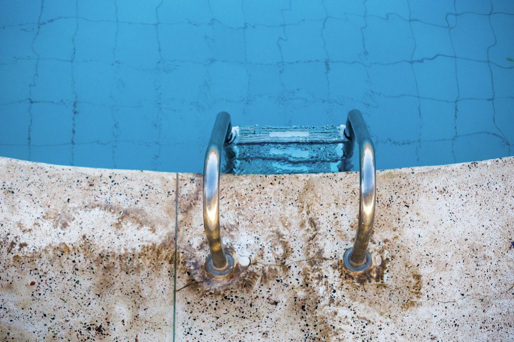 The average backyard swimming pool could have about two gallons of urine in it.