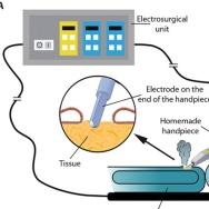 Balog et al., Sci. Trans. Med., 2013.