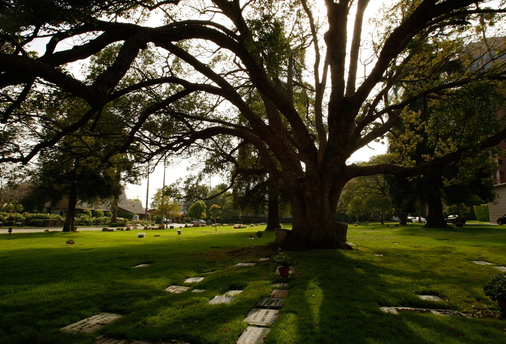 In this file photo, Westwood Village Memorial Park cemetery is shown on August 18, 2009 in Westwood Village, Calif.