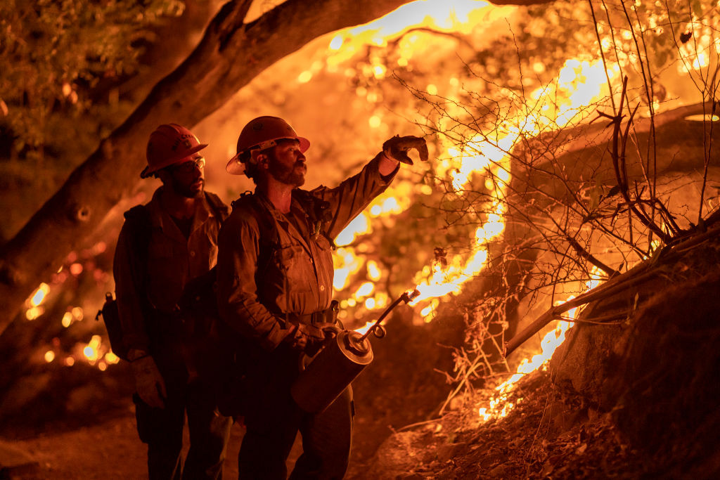 ARCADIA, CA - SEPTEMBER 13: Mill Creek Hotshots set a backfire to protect homes during the Bobcat Fire on September 13, 2020 in Arcadia, California. California wildfires that have already incinerated a record 2.3 million acres this year and are expected to continue till December. The Bobcat Fire, burning in the San Gabriel Mountains, has grown to about 32,000 acres and is only 6% contained.  (Photo by David McNew/Getty Images)