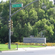 Campus of UC Riverside.