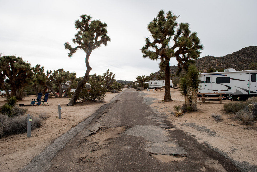 Flooding and the combined traffic of thousands of cars, trucks and RVs have torn up the roads at Joshua Tree National Park's Black Rock Canyon Campground. The majority of the park's $35 million maintenance backlog is for roads like this.