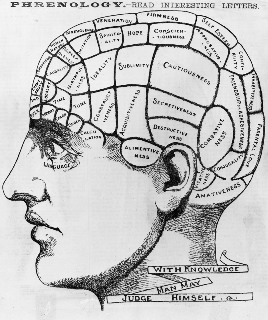 Circa 1880: A phrenological cross-section of a man's head, illustrating the idea that the brain processes thoughts in different locations according to their type.
