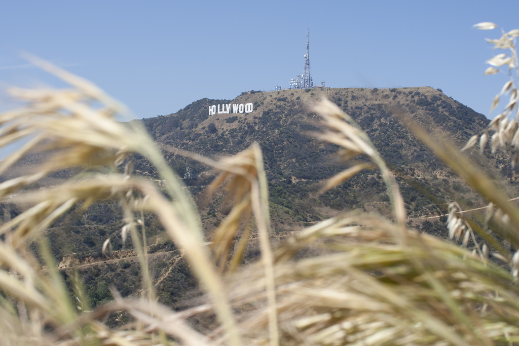 The Hollywood Sign is seen high above drying vegetation in Griffith Park on March 29, 2015 in Los Angeles, California.