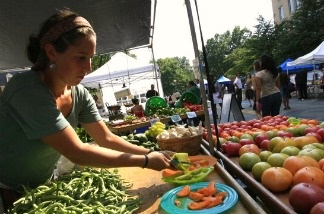 A vendor cuts heirloom tomatoes to serve as samples for potential customers at a farmer's market.