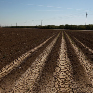 California drought - generic Farmers Hire Drilling Crew To Search For Water To Irrigate Crops