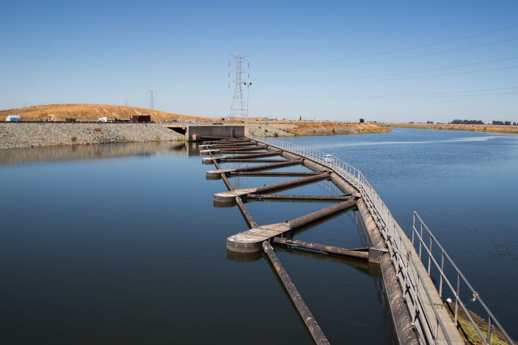 A third of Southern California's water comes from the Bay Delta, where the Sacramento and San Joaquin Rivers merge, and where water from the north of the state mixes with water that meets in the San Francisco Bay.