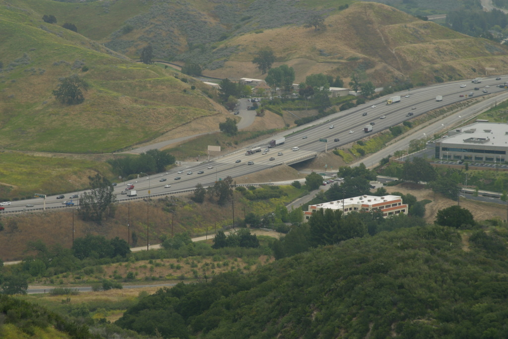 The area surrounding the Liberty Canyon exit on the 101 Freeway is an ideal location for a wildlife crossing because it has natural habitat on both sides of the freeway and connects to vast areas of open space.