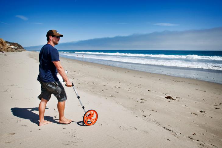 Malibu Beach Isopods - 5