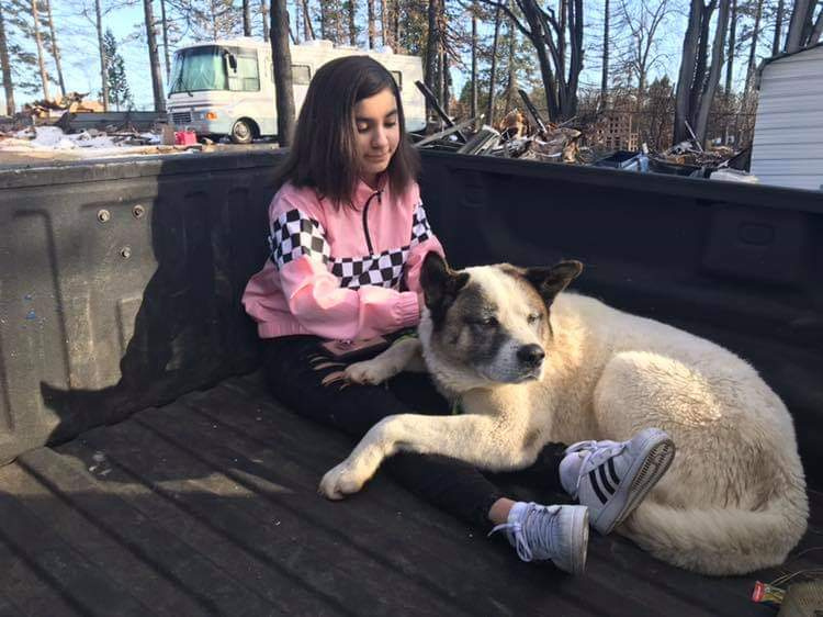 Maleah Ballejos reunited with her dog, Kingston, who was missing for 101 days in the aftermath of the Camp Fire in Paradise, Calif.