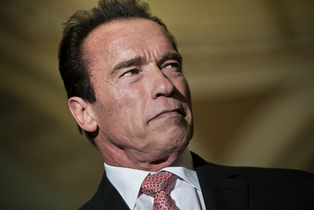 FILE PHOTO: Actor and former California governor Arnold Schwarzenegger waits to speak to the press on Capitol Hill October 30, 2013 in Washington, DC.