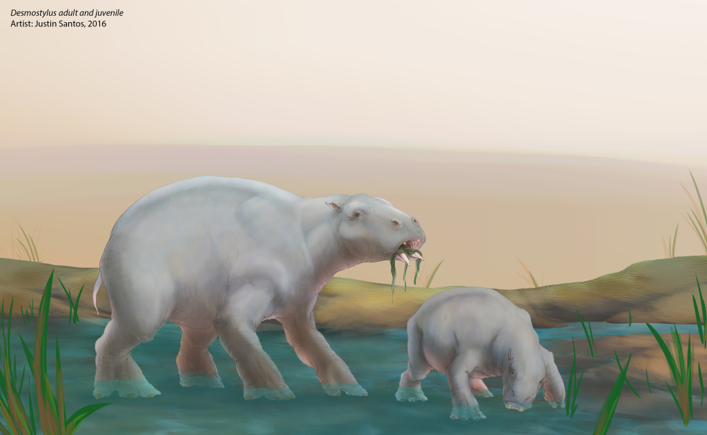 An artists rendering of a desmostylus adult and juvenile. Image by Justin Santos.