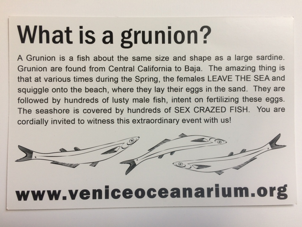 Tim Rudnick, this flyer's author, has taken some flak for describing the grunion's mating ritual as a